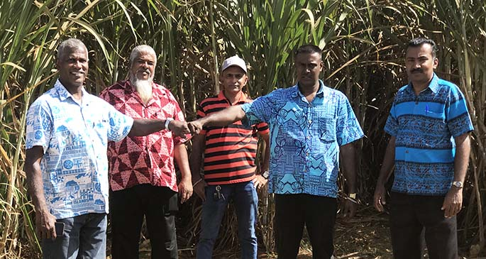 Assistant Minister for Sugar, George Vegnathan fist pump with a new cane farmer in Seaqaqa Shaan Ali while visiting his 85 acres of cane on June 19, 2020. Photo: Laisa Lui