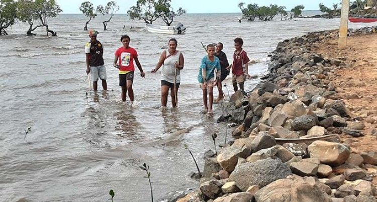 Western Empire Group Youths Assist In Mangrove Planting