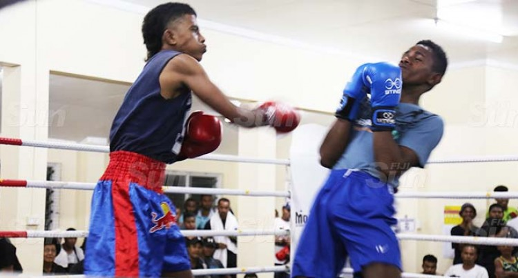 Good Start For Amateur Boxing