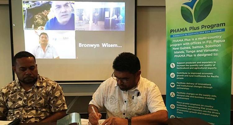 Fiji's First Kava Greenhouse