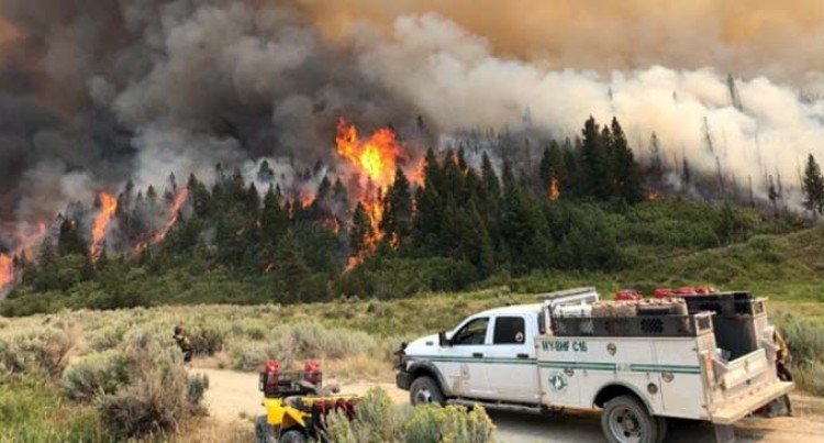 Wildfire In U.S. Colorado State Scorches Over 20,000 Acres