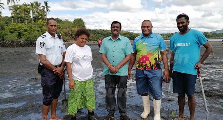 Minister Plants Mangroves In Navuniivi
