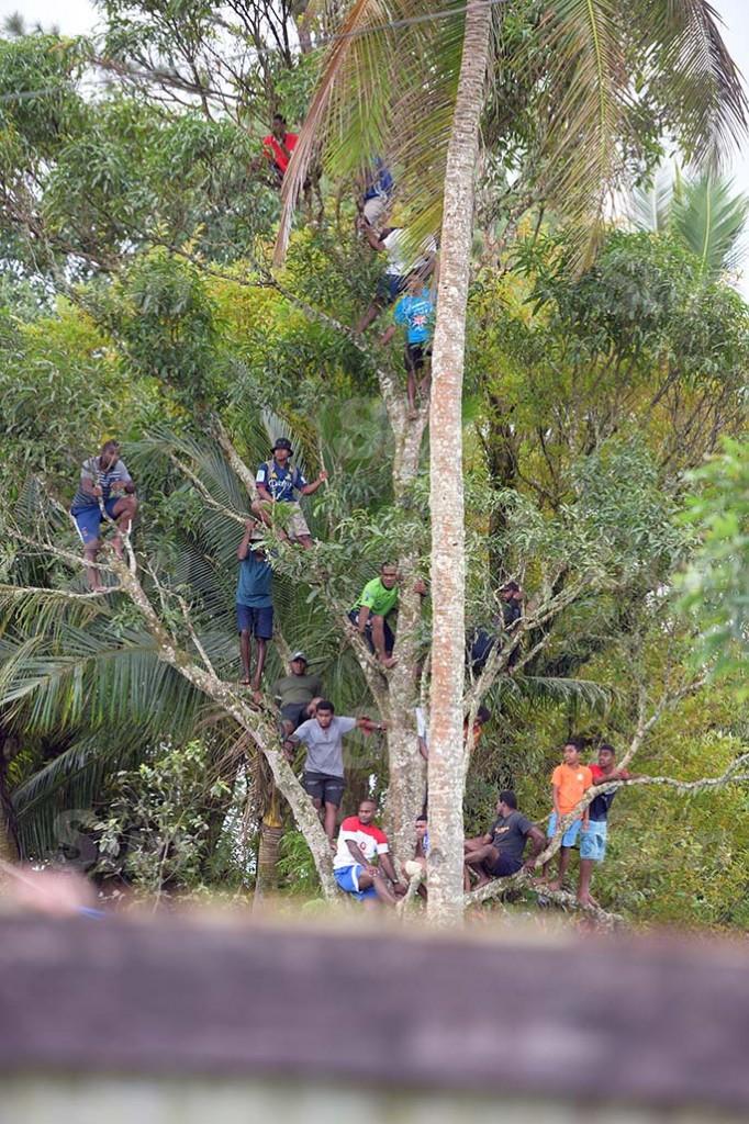 Rugby fans watching Namosi-Naitasiri double header from tree tops at Thomson Park, Navua on August 8,2020. Photo: Ronald Kumar