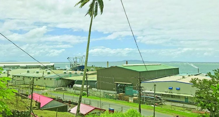PAFCO, The Golden Egg Of Levuka