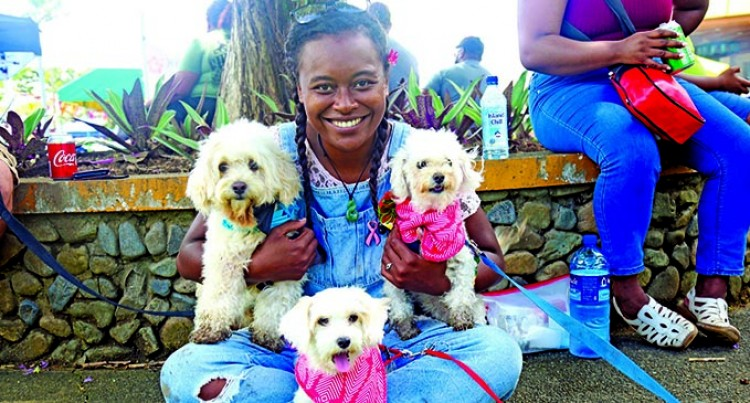 1000 Paws Walk Celebrates Life Of an Animal Rights Advocate