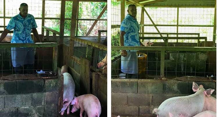 Resilience Drives Serea Farmer Saimoni Nabitunimavu