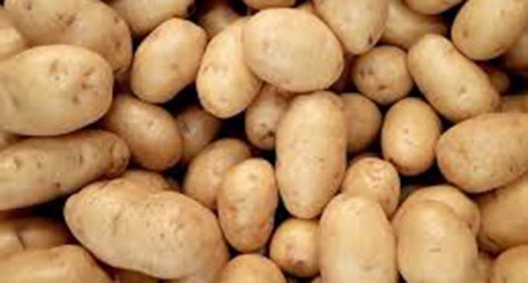 Rotten Potatoes And Onions Found In Most Supermarkets
