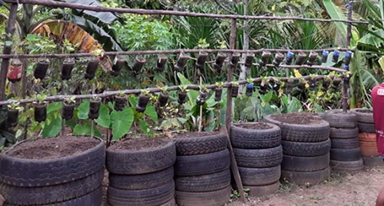 Wailea Embraces Composting