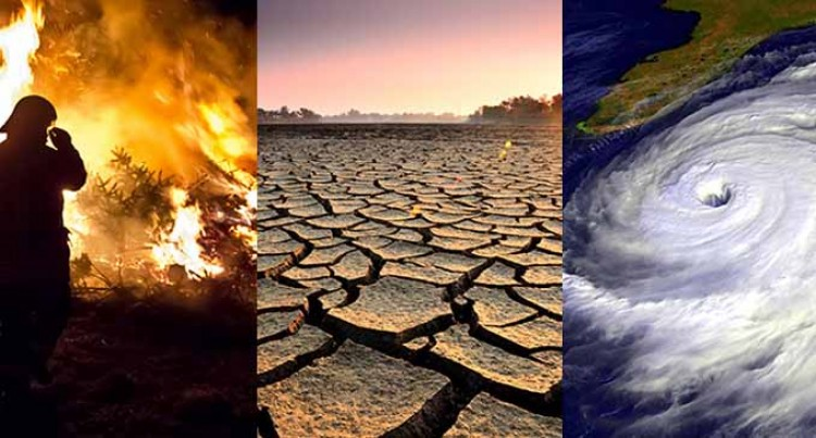 Biggest Ever Survey On Climate Change