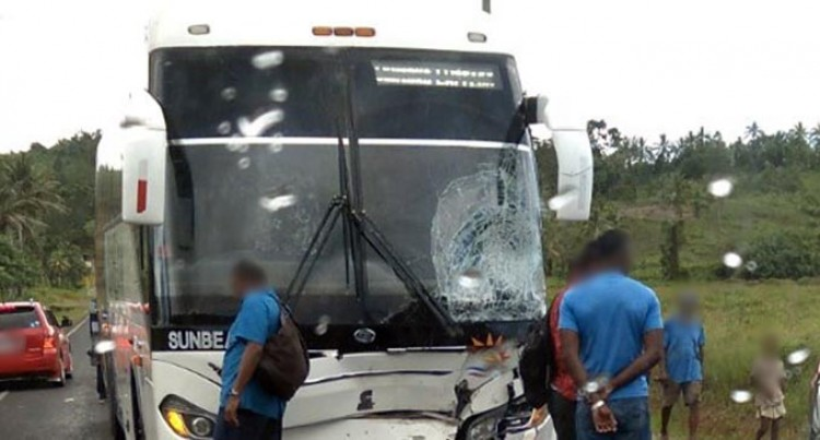 Teen Dead In Bus-Horse Collision