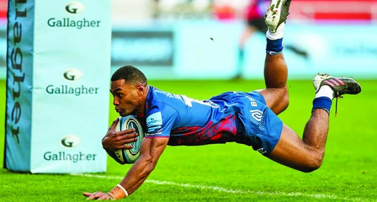 Bristol Fijians Shine For Bears
