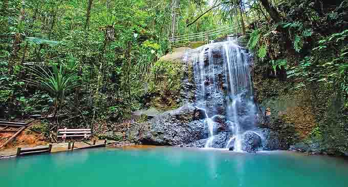 Colo-i-Suva Forest Park is a nature reserve near Suva, Fiji. It offers hiking trails, swimming, and birdwatching. Photo: P&O Cruises Australia