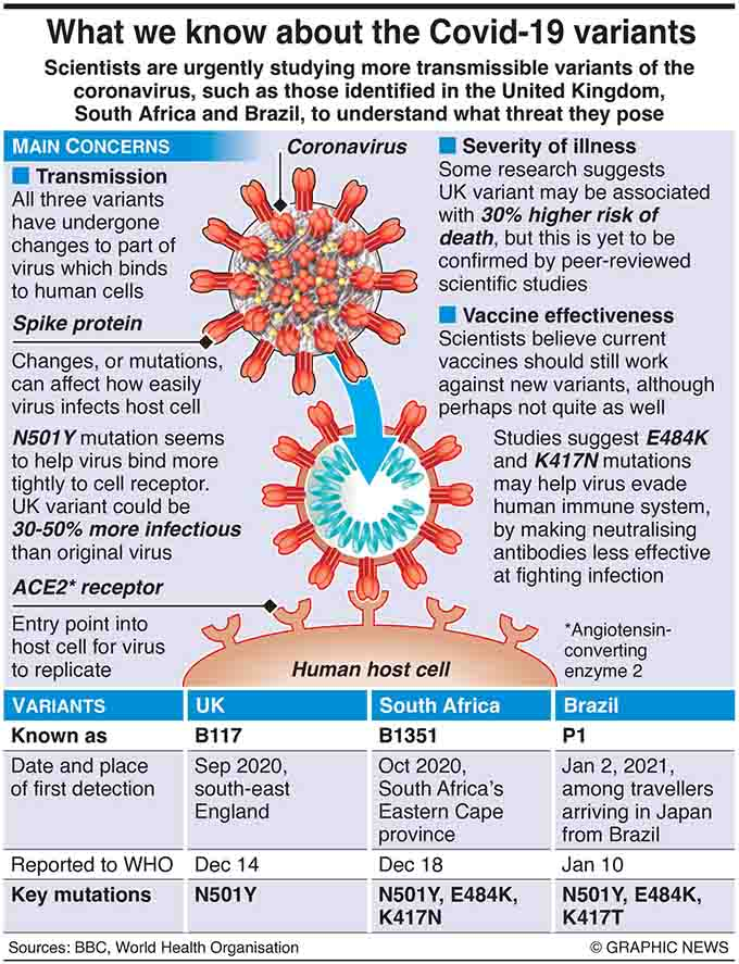 February 4, 2021, Scientists are urgently studying more transmissible variants of the coronavirus, such as those identified in the United Kingdom, South Africa and Brazil, to understand what threat they pose. Graphic shows details of coronavirus variants.