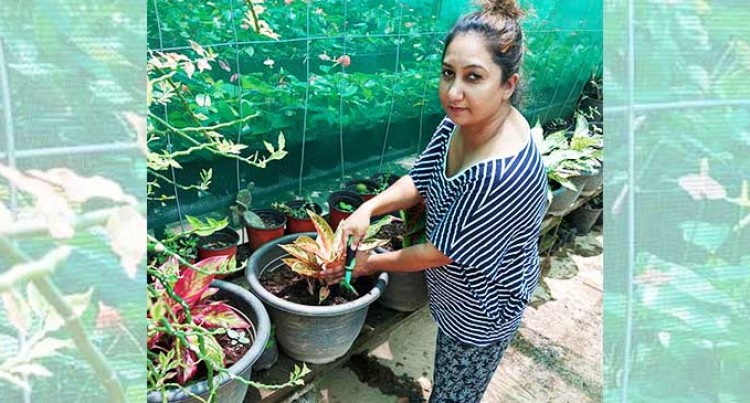 Cyclone Ana, Pandemic Fail To Stop Gardener