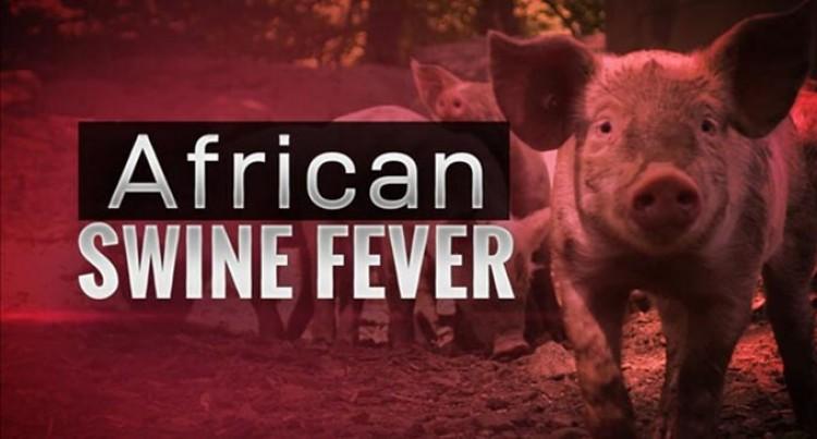 Swine Fever Training For Better Preparedness