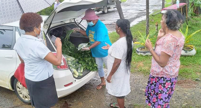 Katarina Baleisuva distributes vegetables to families in Wainibuku and Nakasi HARTs.
