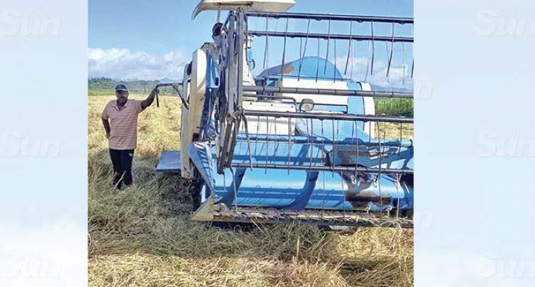 Ministry Raises Rice Farmer's Hopes