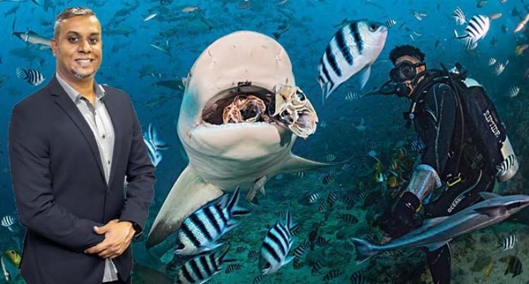 Let's Go Local: Beqa Shark Diving On Designer's List