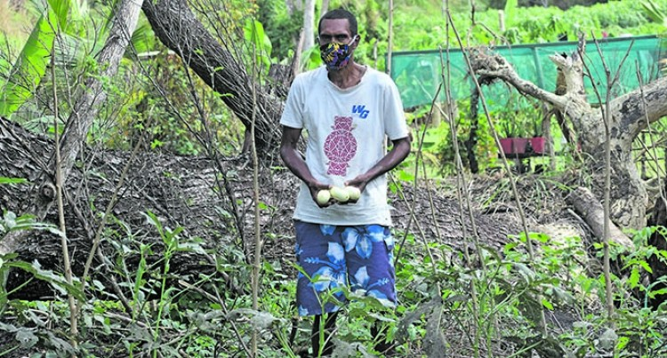 Medically Challenged Father Hands Fresh Produce To The Community