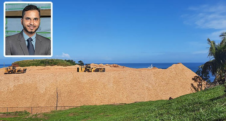 Wood Chips Sold For $6.4M: Fiji Pine