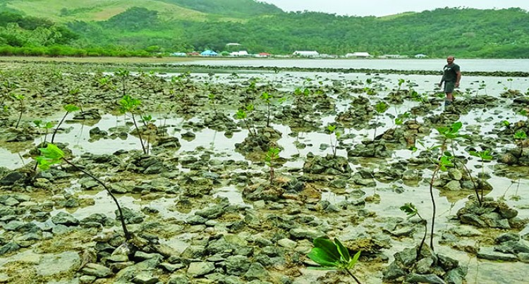 Village Sets up Defence Against Impacts of Climate Change