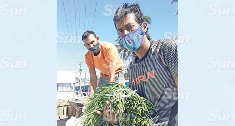 Decrease In Vegetable Price Worries Farmers