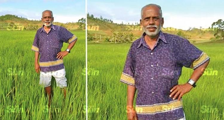 More Rice farmers In Vanua Levu