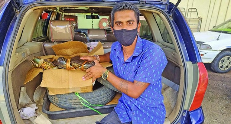 Electrician Diversifies Into Crab Sales To Support Income