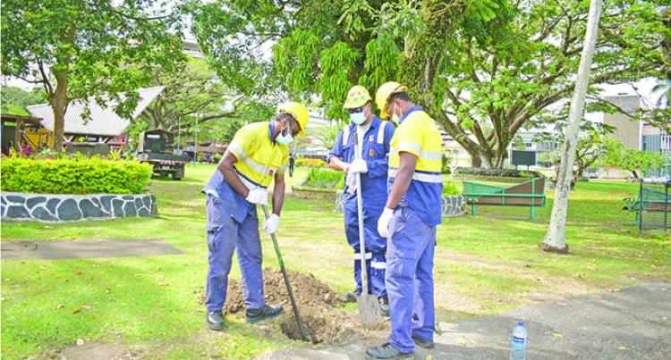 Council Begins Groundwork Upgrade Of Sukuna Park