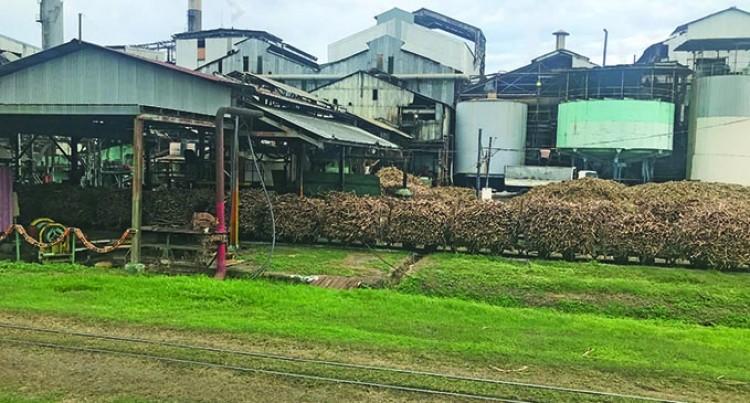 FSC Tells: Boost In Crush At Mills